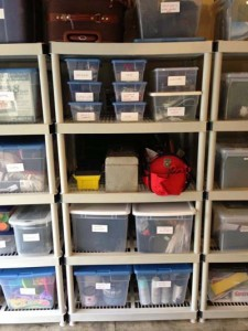 clear plastic bins from the organizing pros