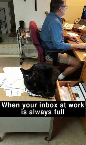 Organize that inbox!