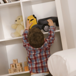 Chaos to Calm: Organizing Systems for Busy Families